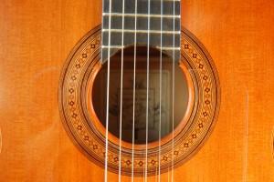 Flamenco Cedro 2
